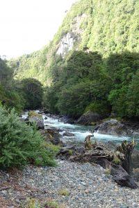 Río Gonzalo