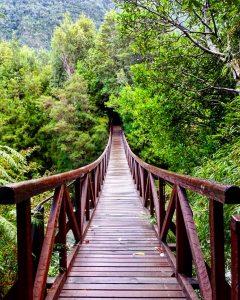 Puente que va hacia el Camping