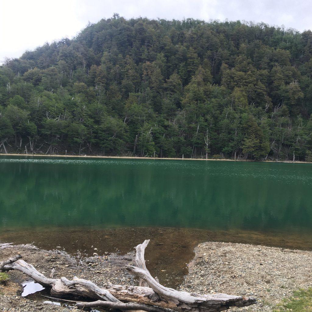 Laguna Escondida, Los Alerces